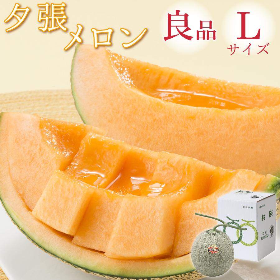 【特価】夕張メロン 良品 1玉 Lサイズ(約1.3kg)【6月下旬よりご注文順に発送】【送料無料】