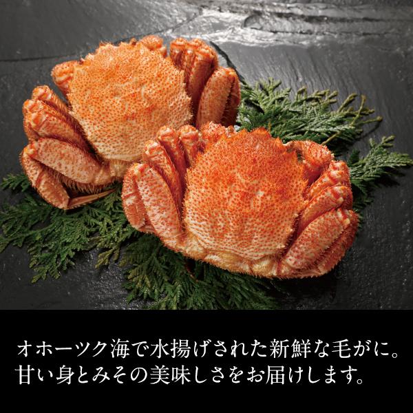北海道オホーツク海産 毛がに 姿 2尾(500g×2)