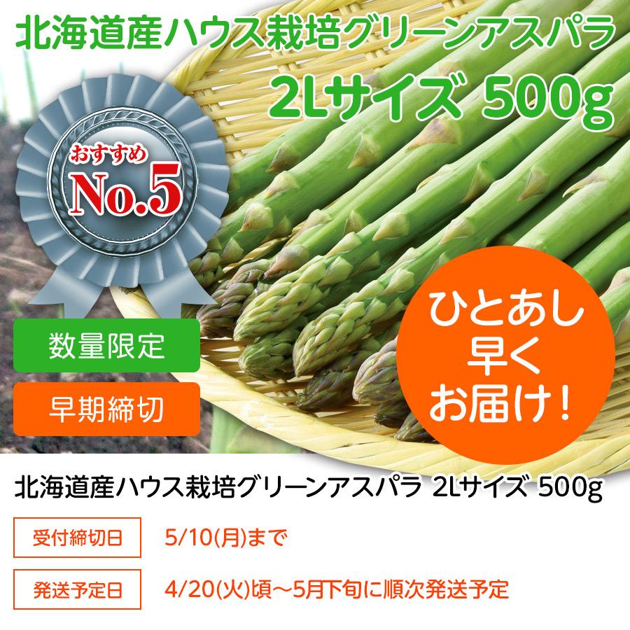 ハウス栽培 グリーンアスパラ 2Lサイズ 500g【送料無料】