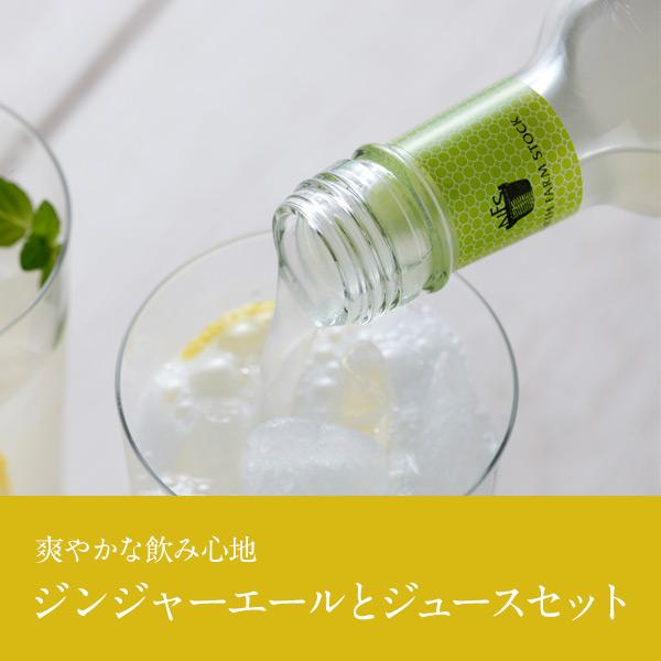 NORTH FARM STOCK ジンジャーエール&ジュース飲み比べギフト【送料無料】
