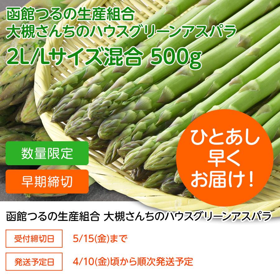 大槻さんちのハウスグリーンアスパラ 2L/L混合 500g【送料無料】