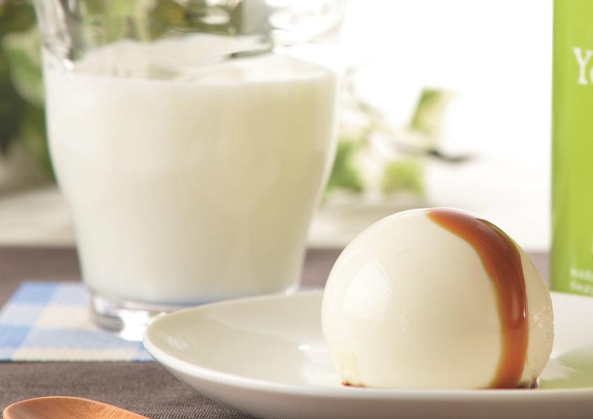 牧家 白いプリンと飲むヨーグルトセット 【送料無料】