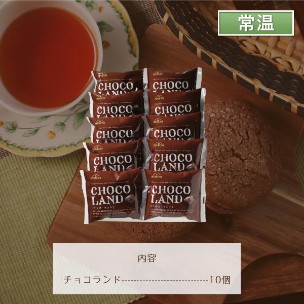 三星 チョコランド10個入【送料無料】