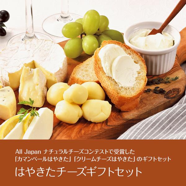 夢民舎 はやきたチーズギフトセット【送料無料】 [W]