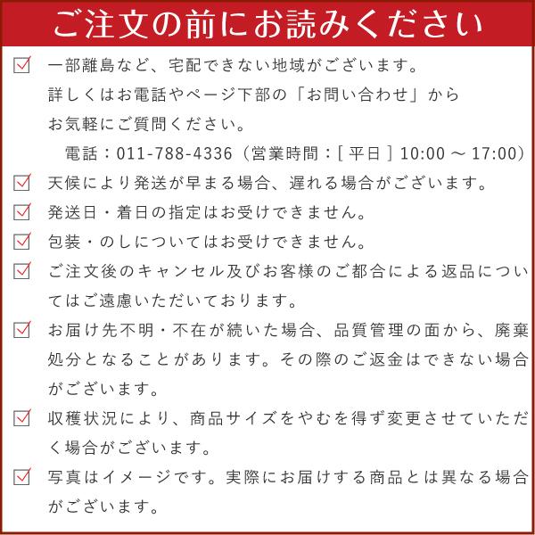 北海道産 雪の下キャベツ 10㎏【送料無料】