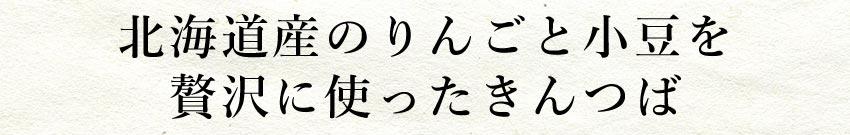 小樽菓匠 六美 北海道産小豆と余市産りんごの金つば 10個セット【送料無料】【ギフトセット】【詰め合わせ】【北海道】【きんつば】
