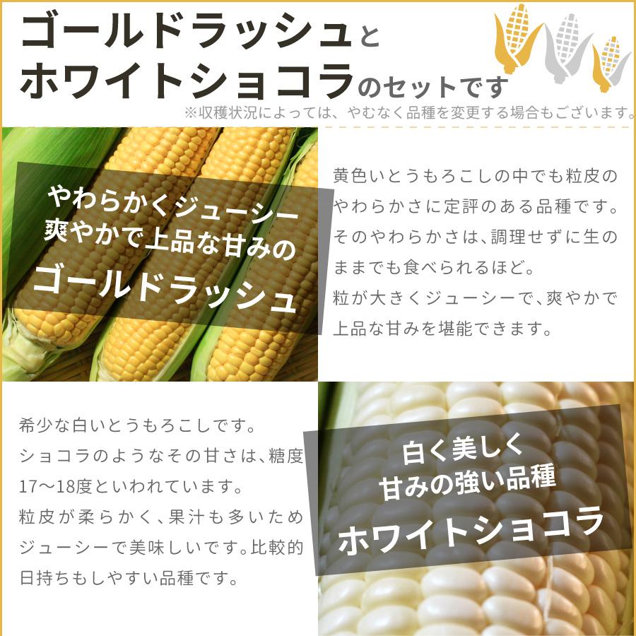 北海道のゴールドラッシュとホワイトショコラの2種類のとうもろこし(とうきび、コーン)のセットです。