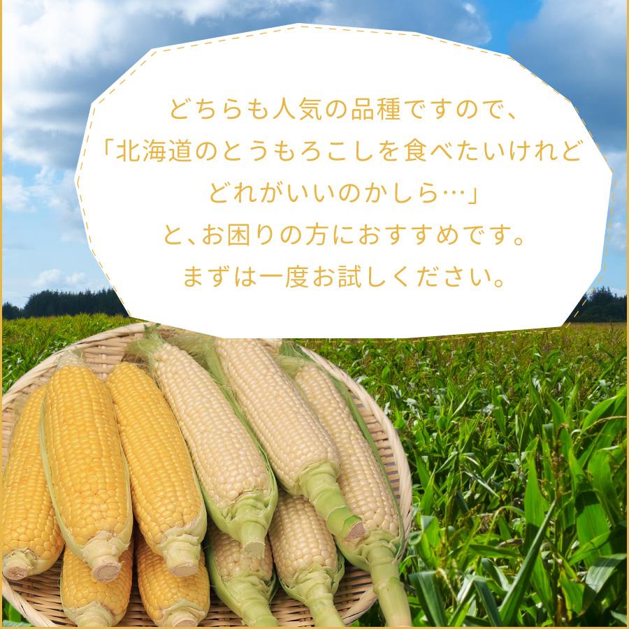北海道のとうもろこしの中でも特に人気のあるとうもろこし(とうきび、コーン)のセットです。