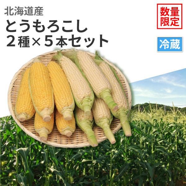 北海道産 とうもろこし 2種×5本セット【8月25日(日)より順次発送】【送料無料】