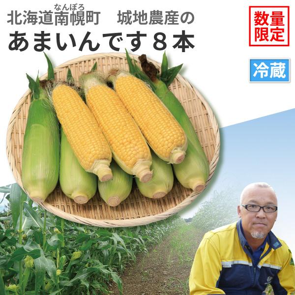 北海道南幌町産 城地農産のとうもろこし あまいんです8本【8月25日(日)より順次発送】【送料無料】