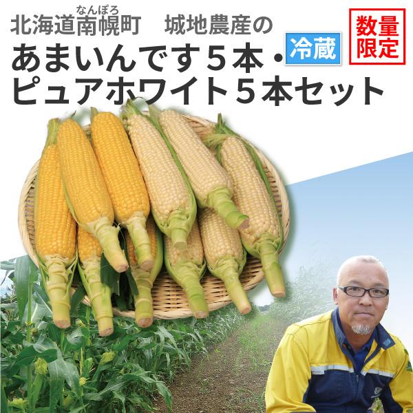 北海道南幌町産 城地農産のとうもろこし あまいんです5本・ピュアホワイト5本セット【8月25日(日)より順次発送】【送料無料】