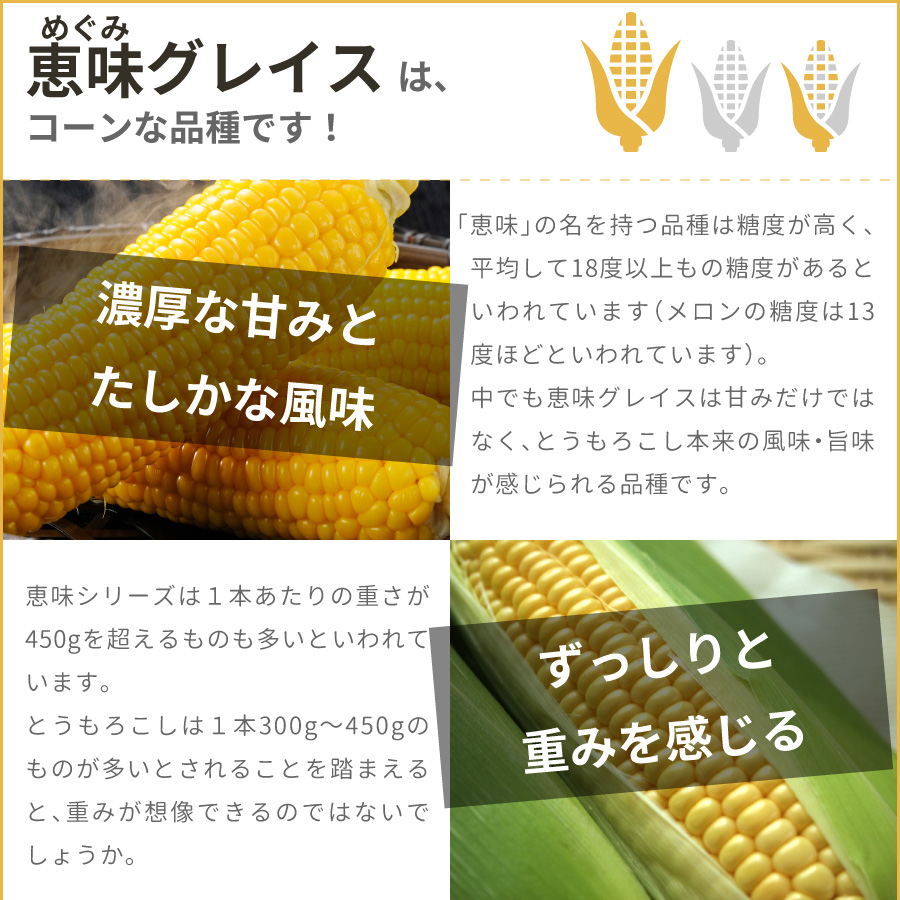 北海道 栗山町のとうもろこし(とうきび、コーン)恵味グレイスはとても甘く、また1本あたり450g以上のものが多いです。