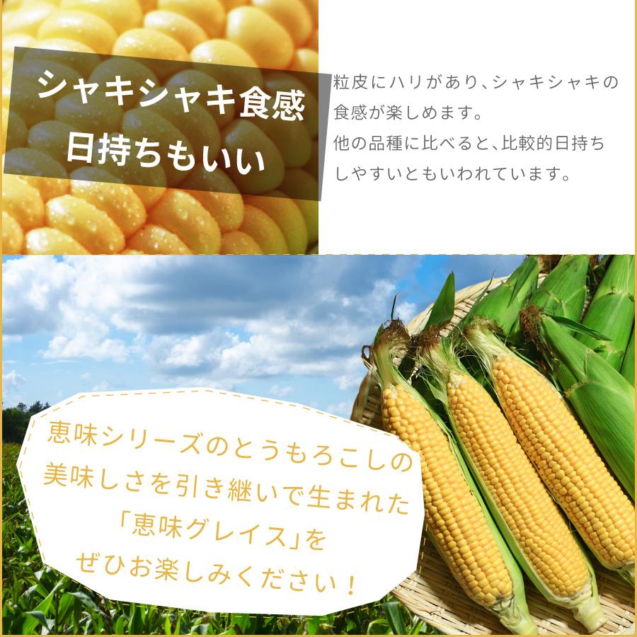 北海道 栗山町のとうもろこし(とうきび、コーン)恵味グレイスは粒皮にハリがあり、シャキシャキとした味わいを楽しめます。