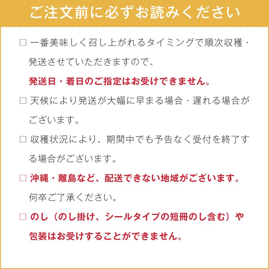 北海道産とうもろこし(とうきび、コーン)ご購入の際は注意事項をよくお読みください。