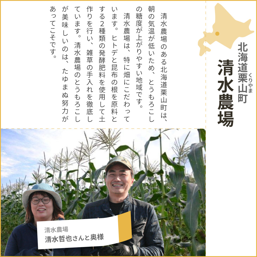 北海道 栗山町のとうもろこし(とうきび、コーン)恵味グレイスを育てた清水農場さんは、土作りにこだわった農家さんです。