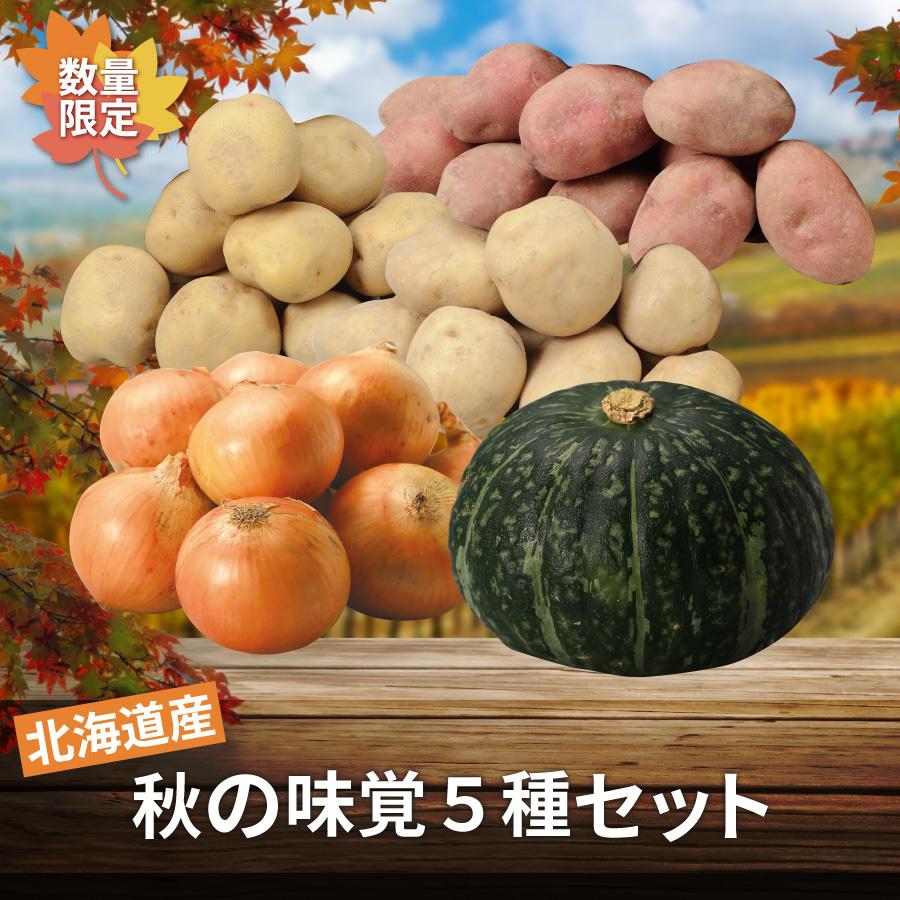 北海道産 秋の味覚5種セット(じゃがいも3種・玉ねぎ・かぼちゃ)【10月中旬より順次発送】【送料無料】