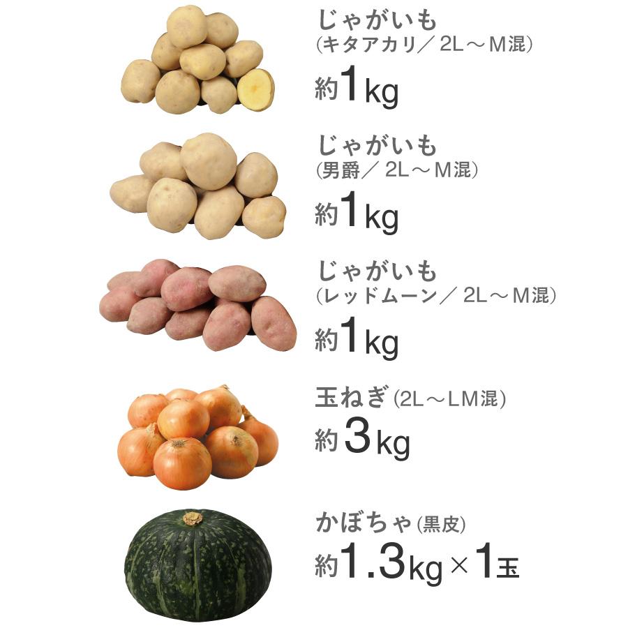 北海道産 秋の味覚5種セット(じゃがいも3種・玉ねぎ・かぼちゃ)【送料無料】