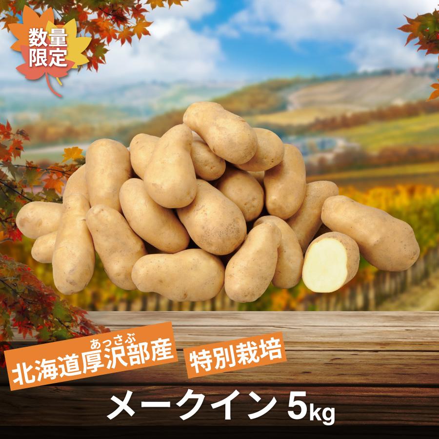 北海道厚沢部産 特別栽培メークイン 5㎏【10月上旬より順次発送】【送料無料】