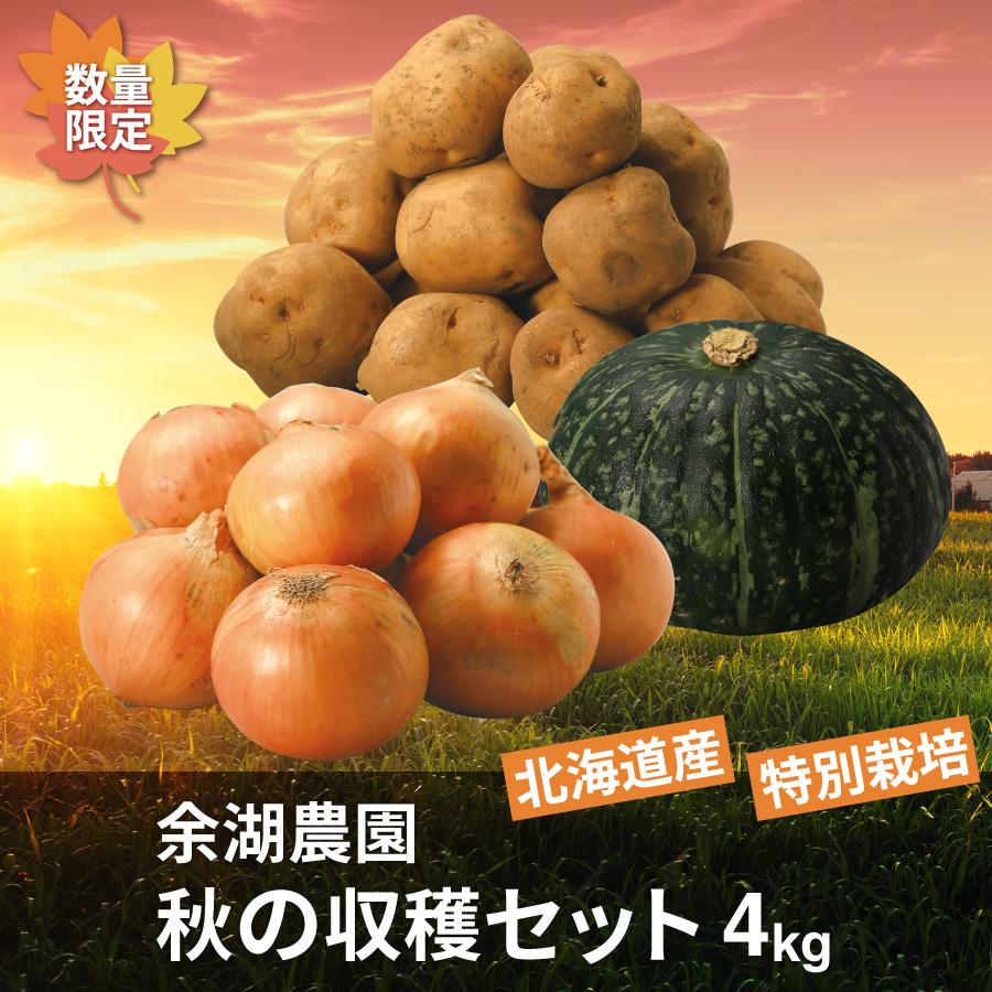 特別栽培 秋の収穫セット 4㎏(じゃがいも・玉ねぎ・かぼちゃ)【送料無料】
