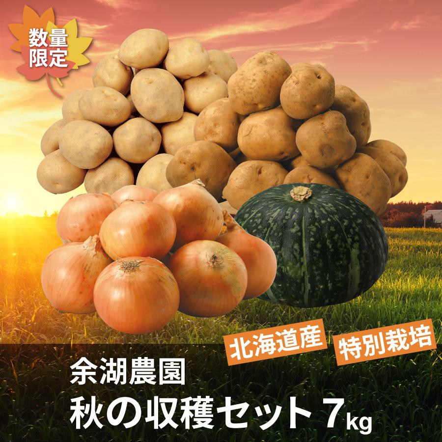 特別栽培 秋の収穫セット 7㎏(じゃがいも2種・玉ねぎ・かぼちゃ)【送料無料】