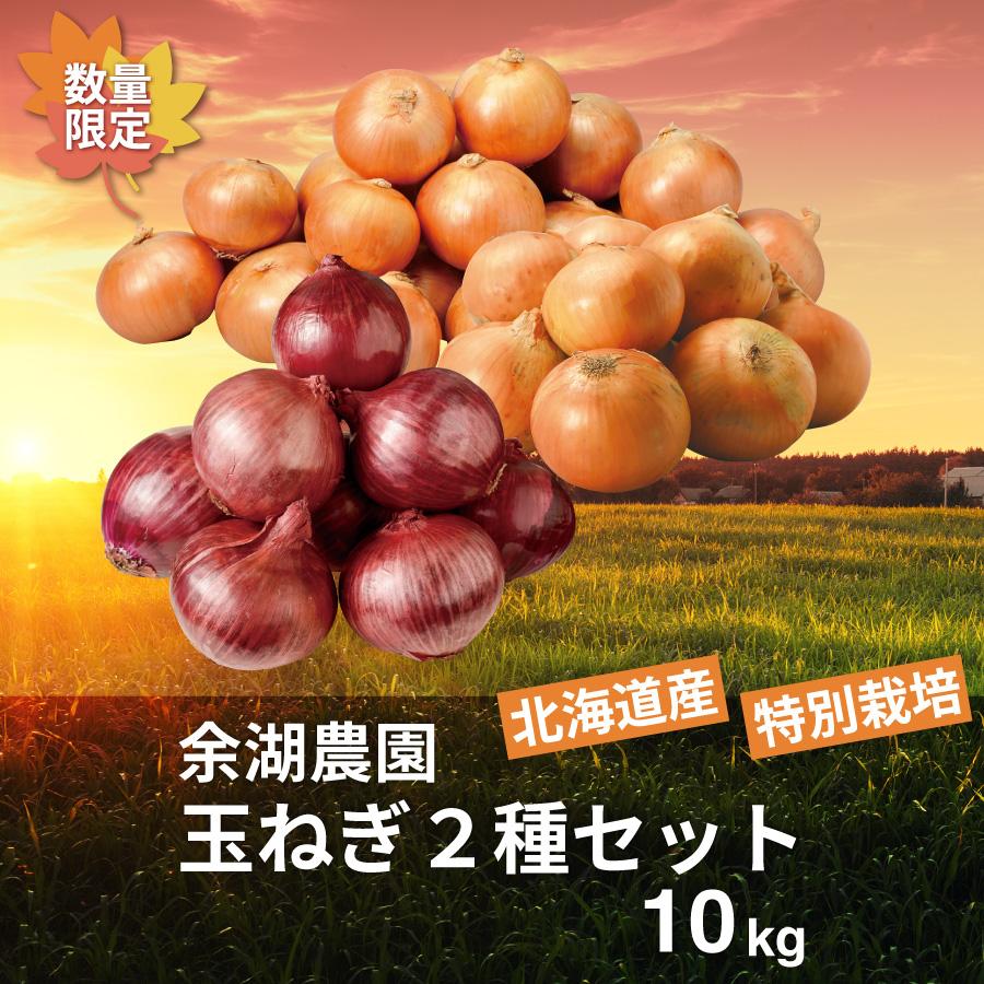 特別栽培 玉ねぎ2種セット 10㎏【送料無料】